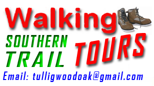 Experience Tullig Wood and Barnagh Tunnel sections of the Southern Trail at your leisure. The tour operates daily, for more information email Dennis McAuliffe tulligwoodoak@gmail.com